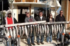 This Corporate Event outing was on June 4th 2009. Between the two boats they chartered on this afternoon we boated 53 fish! Wow... what a great afternoon! Goes to show you that anytime of the day can be a banner time to fish trout and Samon!